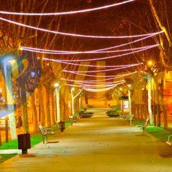 Manguera luces LED en avenida peatonal en árbol de Navidad barato