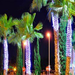 Montar redes y luces Navidad en árboles e iluminación LED