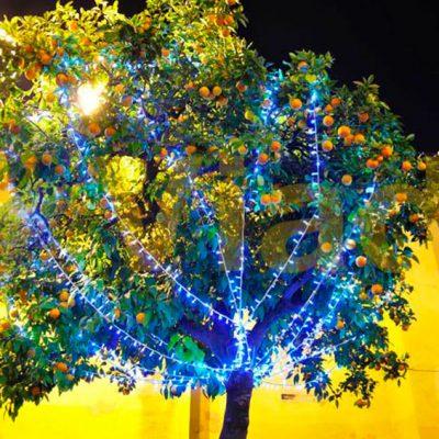Guirnaldas de Navidad y Luces LED esta época del año