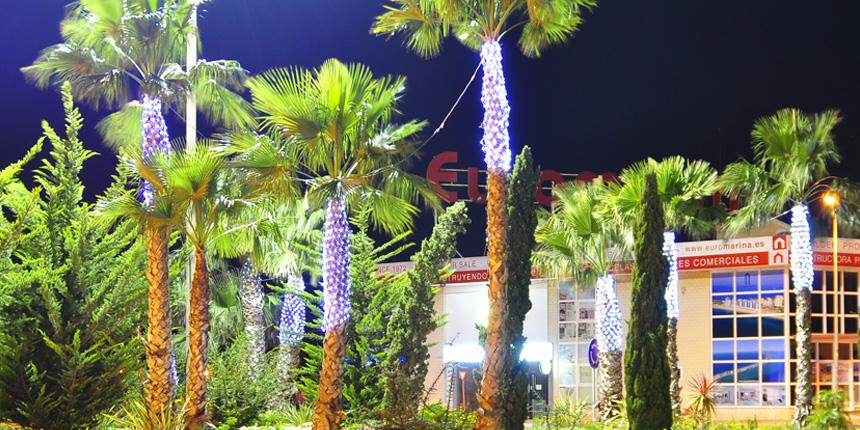 redes de luz en palmeras